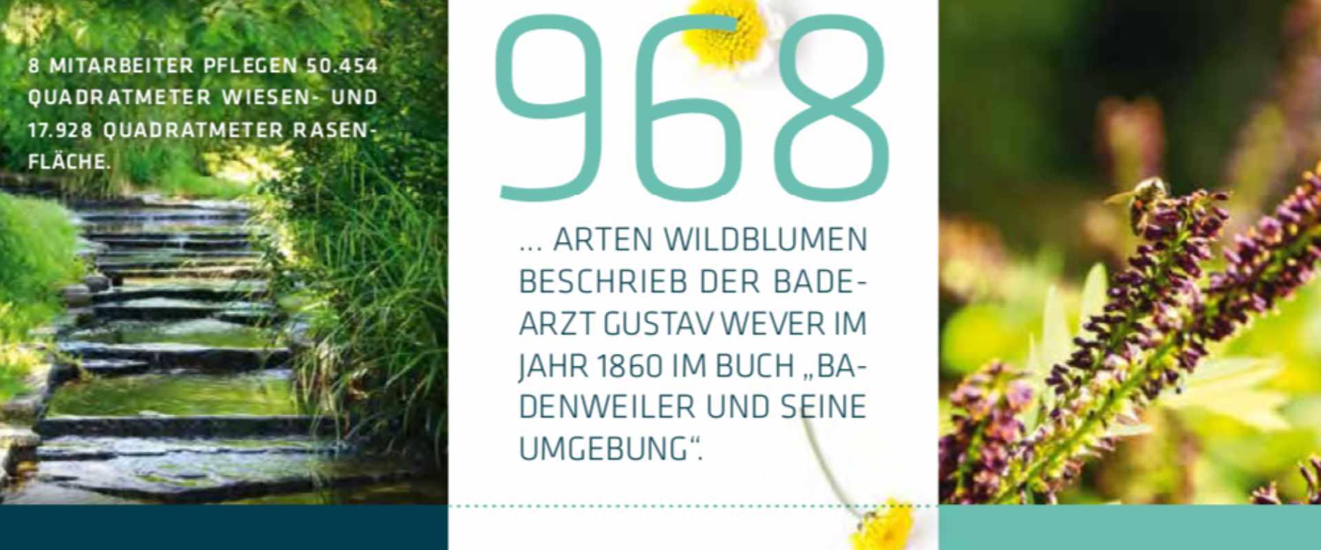 Übrigens, Badenweiler