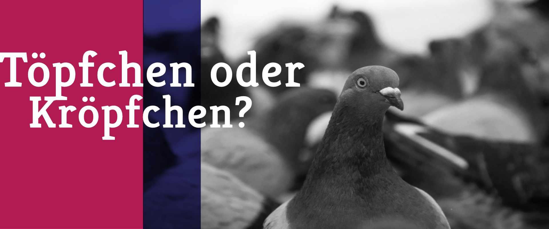 Freiberufler-Strategie: Nein sagen
